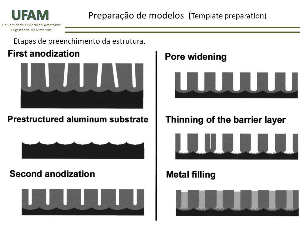 Universidade Federal do Amazonas Engenharia de Materiais Em seguida, os poros são preenchidos por eletrodeposição pulsado com prata.