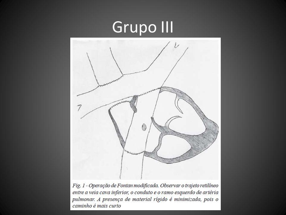 Grupo III