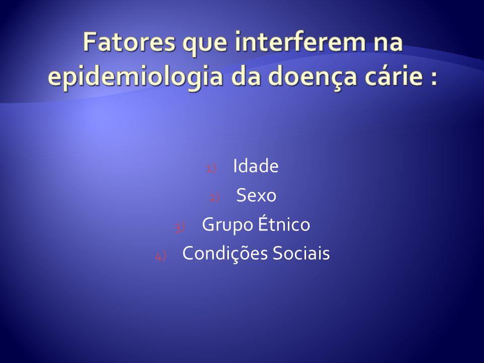 1) Idade 2) Sexo 3) Grupo Étnico 4) Condições Sociais