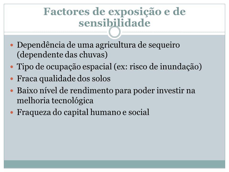 Factores de exposição e de sensibilidade Dependência de uma agricultura de sequeiro (dependente das chuvas) Tipo de ocupação espacial (ex: risco de in