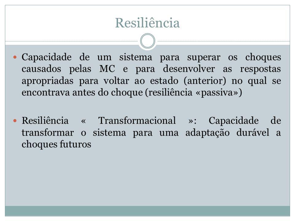 Resiliência Capacidade de um sistema para superar os choques causados pelas MC e para desenvolver as respostas apropriadas para voltar ao estado (ante