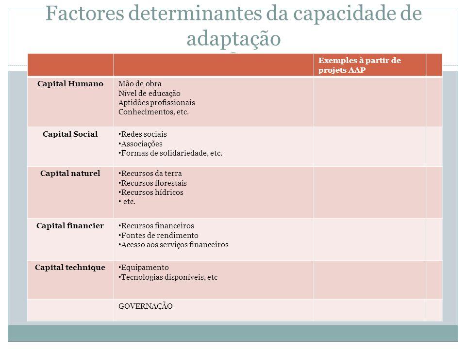 Factores determinantes da capacidade de adaptação Exemples à partir de projets AAP Capital HumanoMão de obra Nível de educação Aptidões profissionais