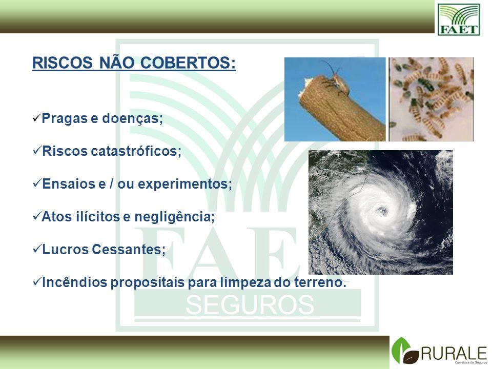 RISCOS NÃO COBERTOS: Pragas e doenças; Riscos catastróficos; Ensaios e / ou experimentos; Atos ilícitos e negligência; Lucros Cessantes; Incêndios propositais para limpeza do terreno.