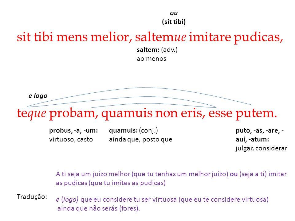 sit tibi mens melior, saltem ue imitare pudicas, Tradução: A ti seja um juízo melhor (que tu tenhas um melhor juízo) ou (seja a ti) imitar as pudicas