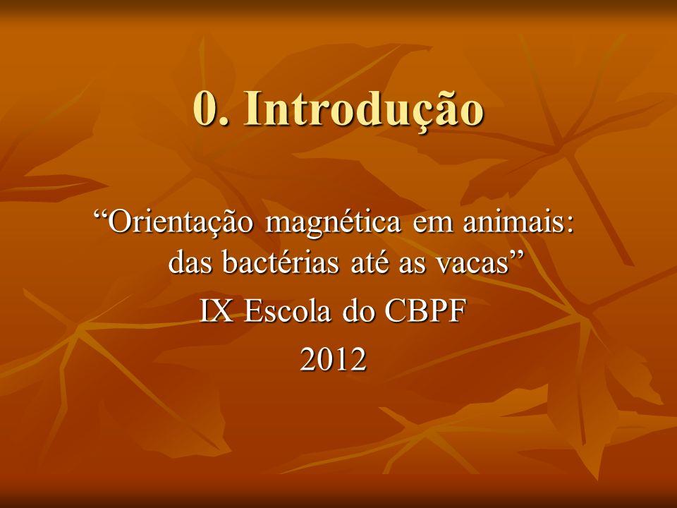 O grupo de Biofísica do CBPF Dra.Darci Esquivel (darci@cbpf.br) Dra.