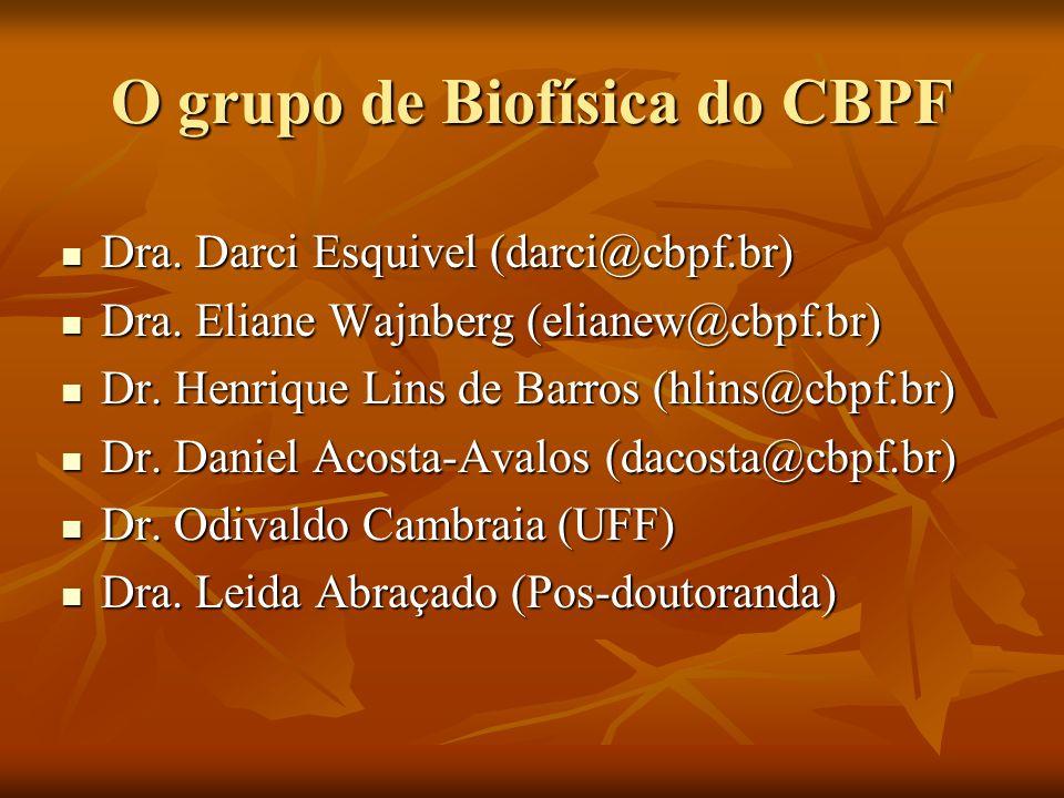 O grupo de Biofísica do CBPF