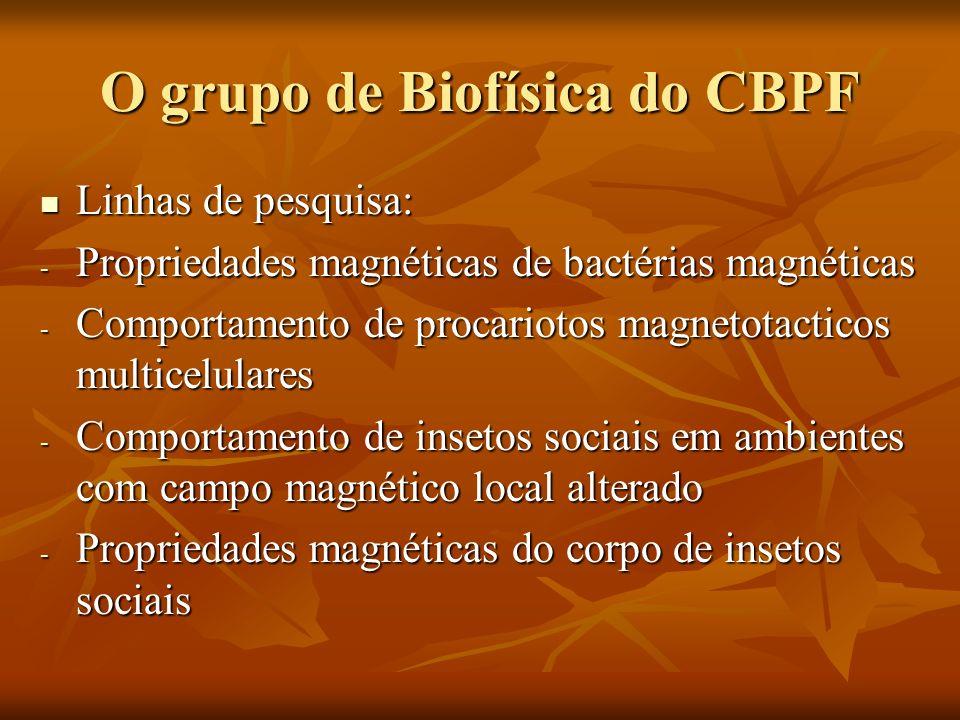 Biofísica Entendemos a biofísica como o estudo de problemas biológicos através de técnicas próprias da física.