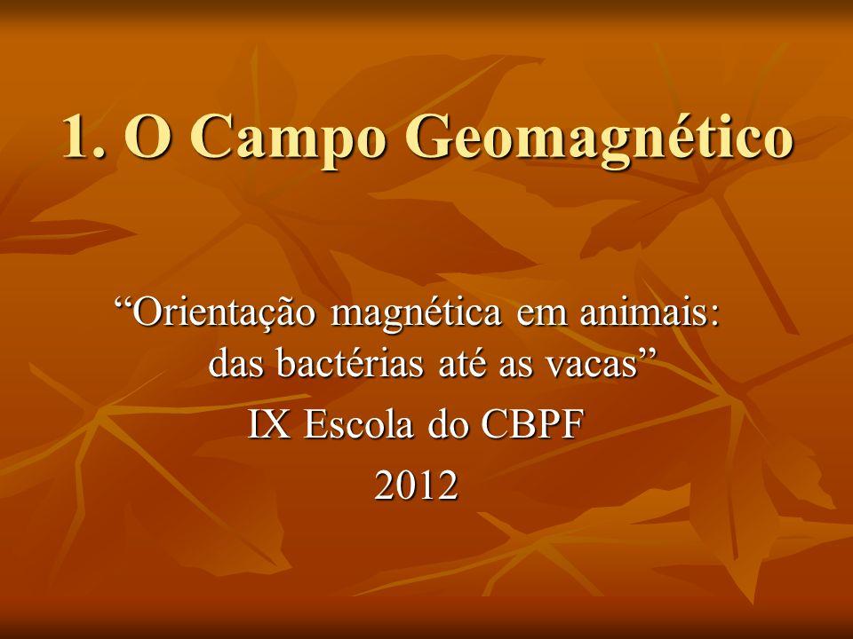 Teoria do potencial no campo geomagnético Relação entre os pólos geográficos, geomagnéticos e magnéticos Geomagnético: a partir do IGRF Magnético: experimental