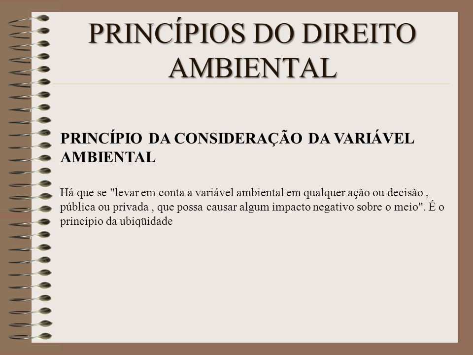 PRINCÍPIOS DO DIREITO AMBIENTAL PRINCÍPIO DA CONSIDERAÇÃO DA VARIÁVEL AMBIENTAL Há que se