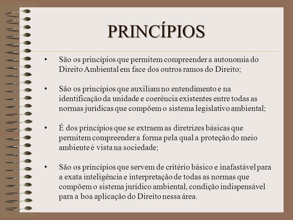 PRINCÍPIOS São os princípios que permitem compreender a autonomia do Direito Ambiental em face dos outros ramos do Direito; São os princípios que auxi