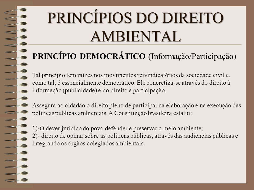 PRINCÍPIOS DO DIREITO AMBIENTAL PRINCÍPIO DEMOCRÁTICO (Informação/Participação) Tal princípio tem raízes nos movimentos reivindicatórios da sociedade