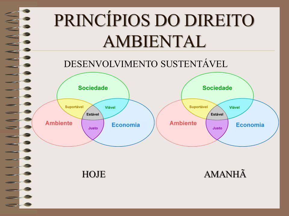 PRINCÍPIOS DO DIREITO AMBIENTAL HOJEAMANHÃ DESENVOLVIMENTO SUSTENTÁVEL