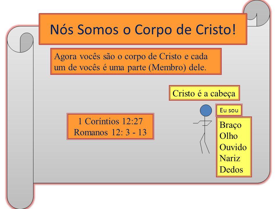 Nós Somos o Corpo de Cristo! Agora vocês são o corpo de Cristo e cada um de vocês é uma parte (Membro) dele. 1 Coríntios 12:27 Romanos 12: 3 - 13 Braç