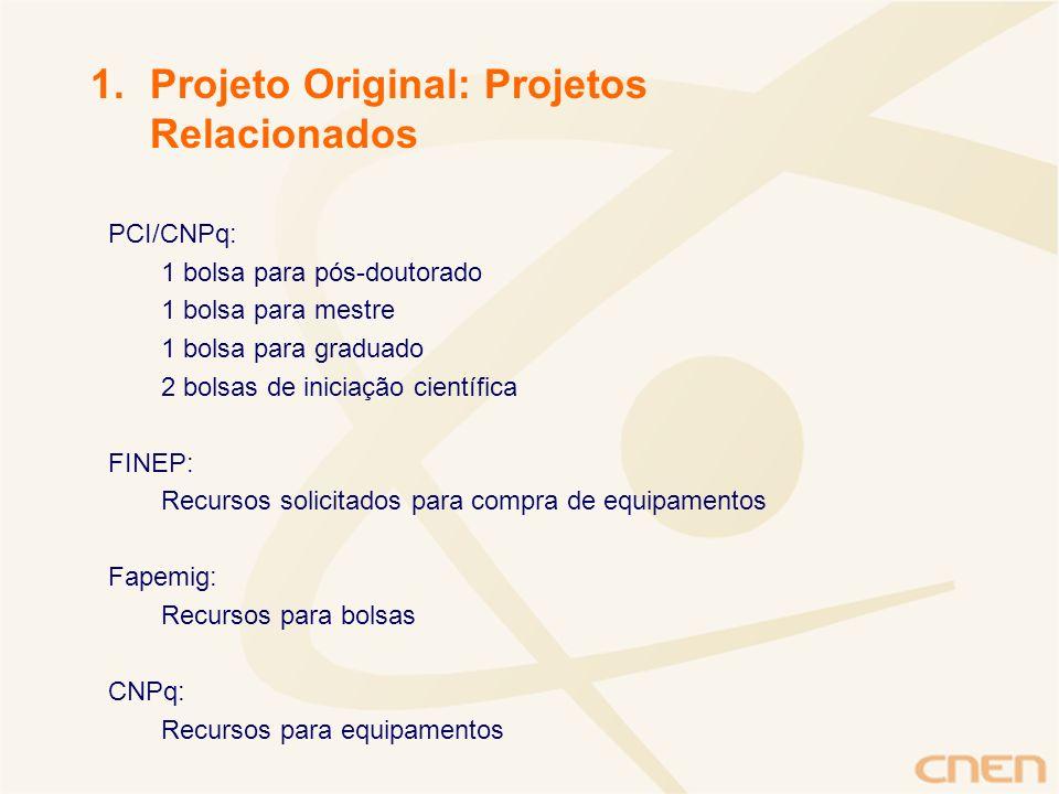 PCI/CNPq: 1 bolsa para pós-doutorado 1 bolsa para mestre 1 bolsa para graduado 2 bolsas de iniciação científica FINEP: Recursos solicitados para compr