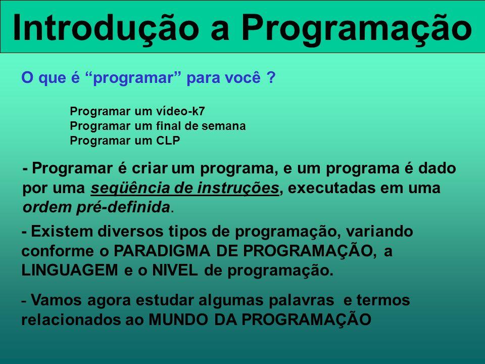 Introdução a Programação - Programar é criar um programa, e um programa é dado por uma seqüência de instruções, executadas em uma ordem pré-definida.