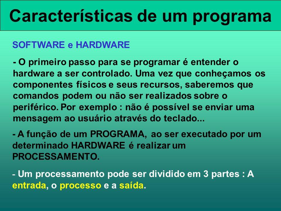 Características de um programa - O primeiro passo para se programar é entender o hardware a ser controlado. Uma vez que conheçamos os componentes físi