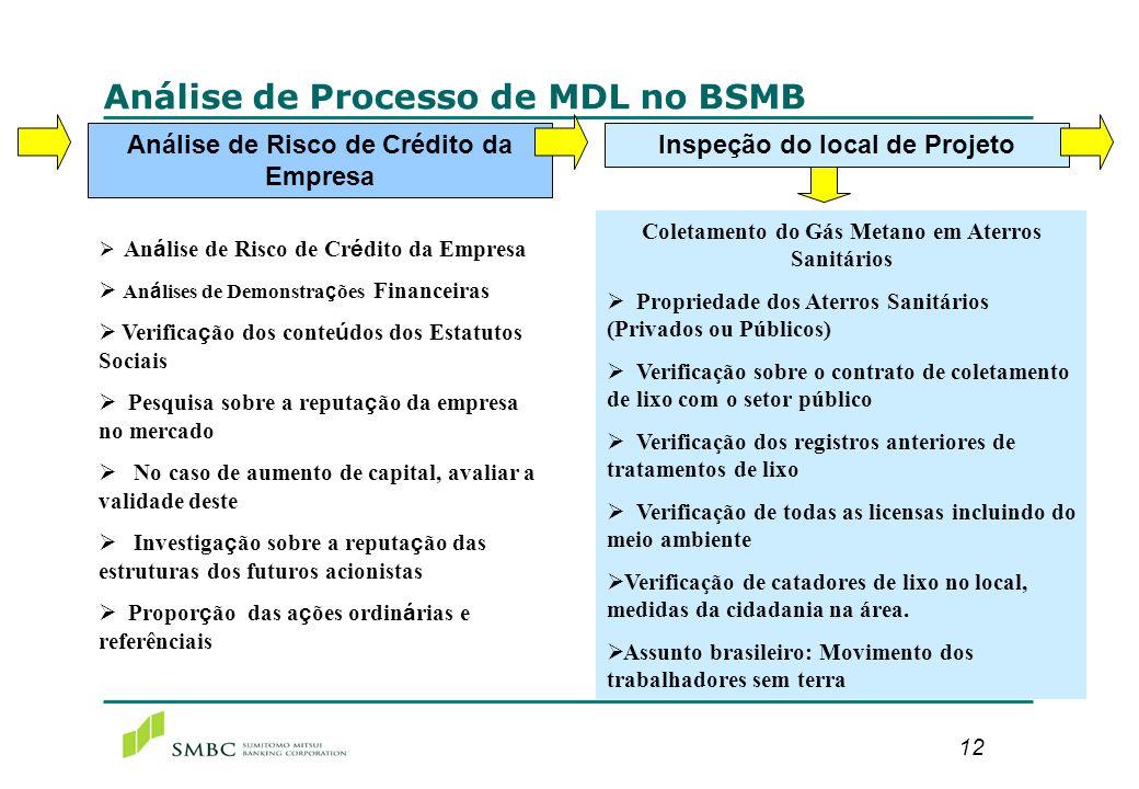 12 Análise de Processo de MDL no BSMB Análise de Risco de Crédito da Empresa An á lises de Demonstra ç ões Financeiras Verifica ç ão dos conte ú dos d