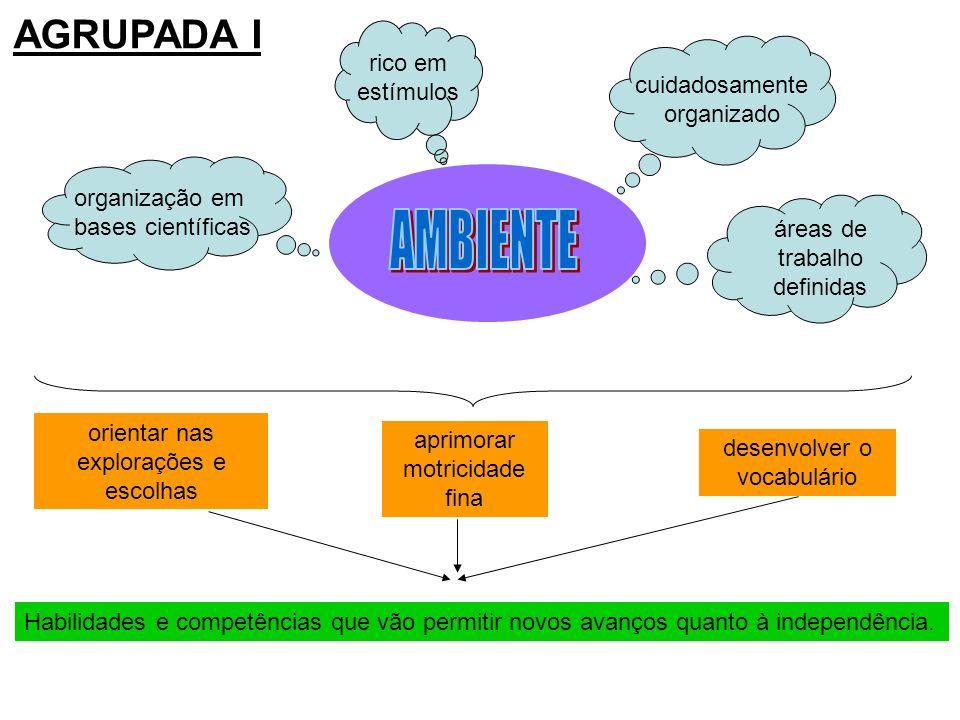 AGRUPADA I rico em estímulos cuidadosamente organizado organização em bases científicas áreas de trabalho definidas orientar nas explorações e escolha