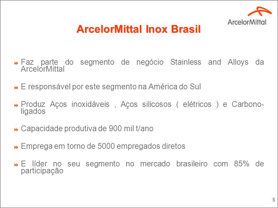5 ArcelorMittal Inox Brasil Faz parte do segmento de negócio Stainless and Alloys da ArcelorMittal E responsável por este segmento na América do Sul P