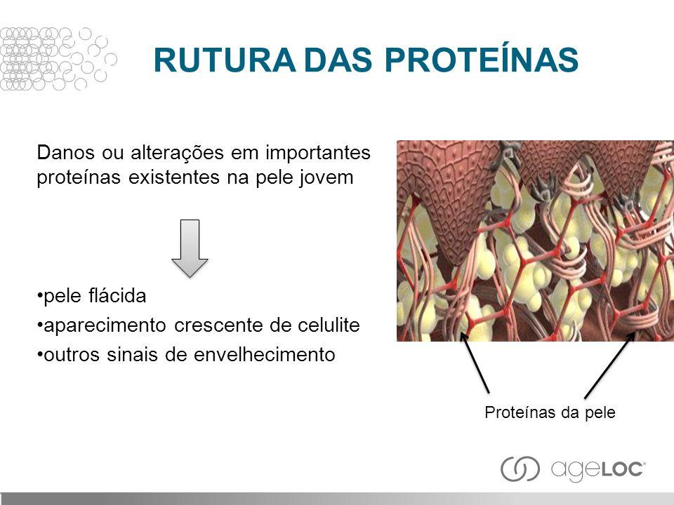 Danos ou alterações em importantes proteínas existentes na pele jovem pele flácida aparecimento crescente de celulite outros sinais de envelhecimento