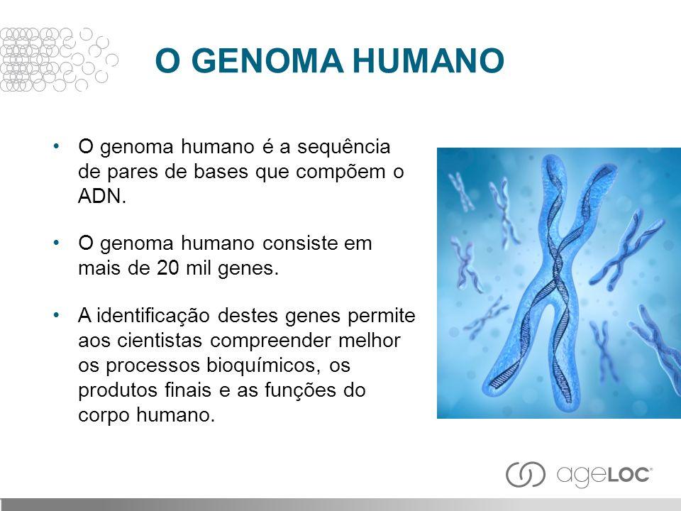 O genoma humano é a sequência de pares de bases que compõem o ADN. O genoma humano consiste em mais de 20 mil genes. A identificação destes genes perm