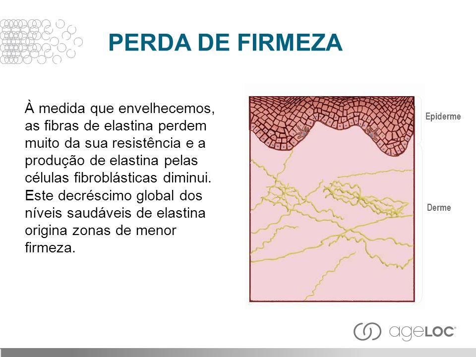 À medida que envelhecemos, as fibras de elastina perdem muito da sua resistência e a produção de elastina pelas células fibroblásticas diminui. Este d