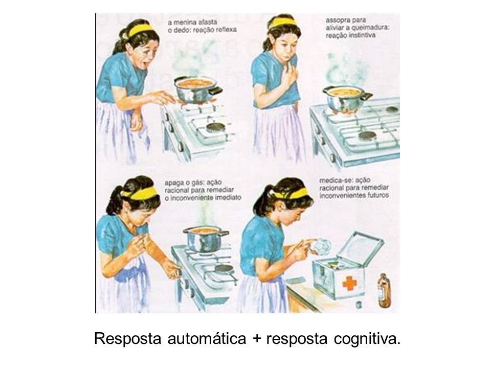 Resposta automática + resposta cognitiva.