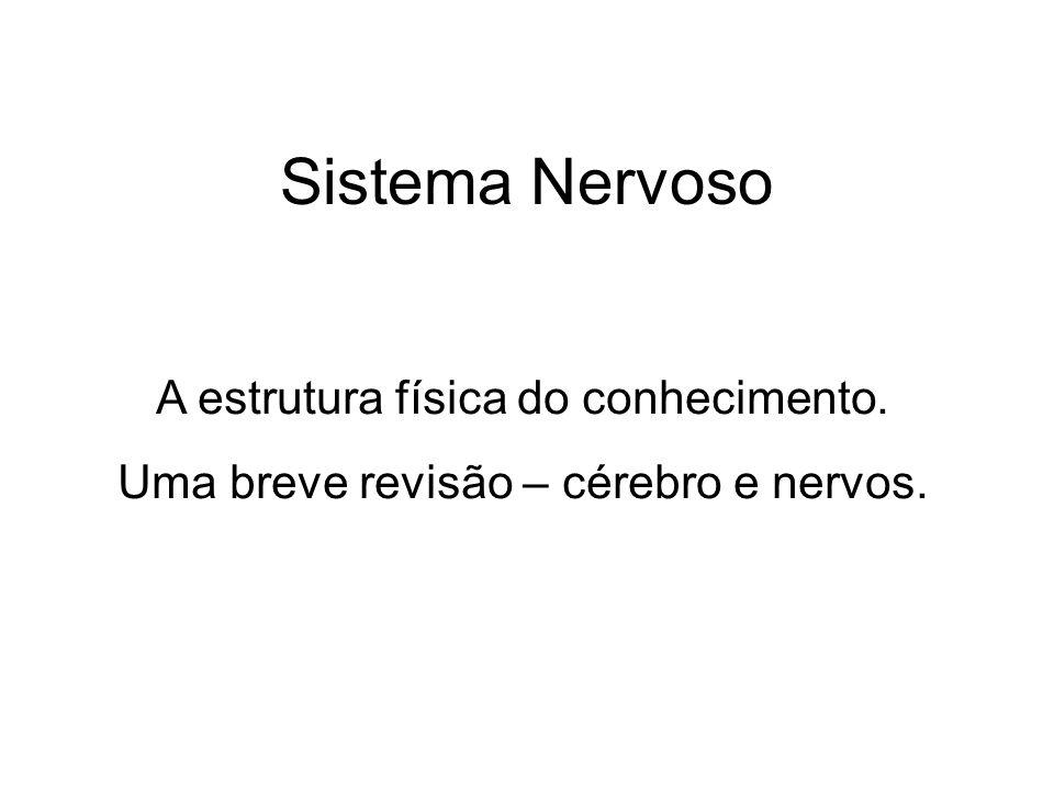 Sistema Nervoso A estrutura física do conhecimento. Uma breve revisão – cérebro e nervos.