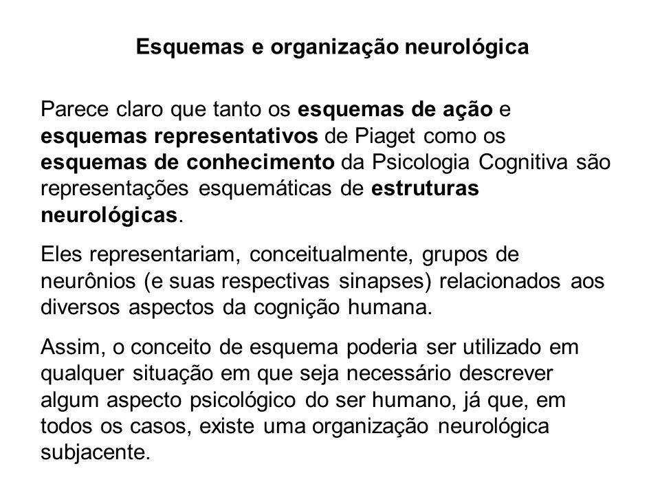 Esquemas e organização neurológica Parece claro que tanto os esquemas de ação e esquemas representativos de Piaget como os esquemas de conhecimento da