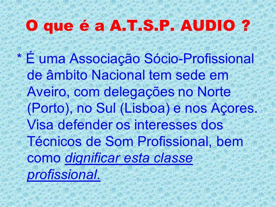 * A comissão para a carteira profissional é o órgão interno da A.T.S.P.