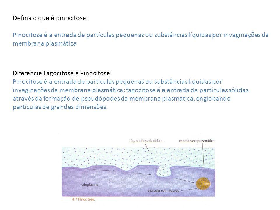 Defina o que é pinocitose: Pinocitose é a entrada de partículas pequenas ou substâncias líquidas por invaginações da membrana plasmática Diferencie Fa