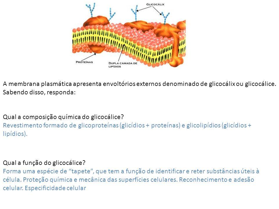 A membrana plasmática apresenta envoltórios externos denominado de glicocálix ou glicocálice. Sabendo disso, responda: Qual a composição química do gl