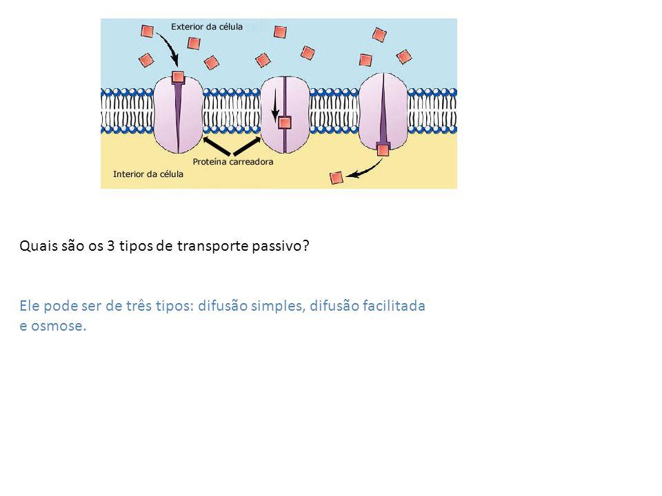Quais são os 3 tipos de transporte passivo? Ele pode ser de três tipos: difusão simples, difusão facilitada e osmose.