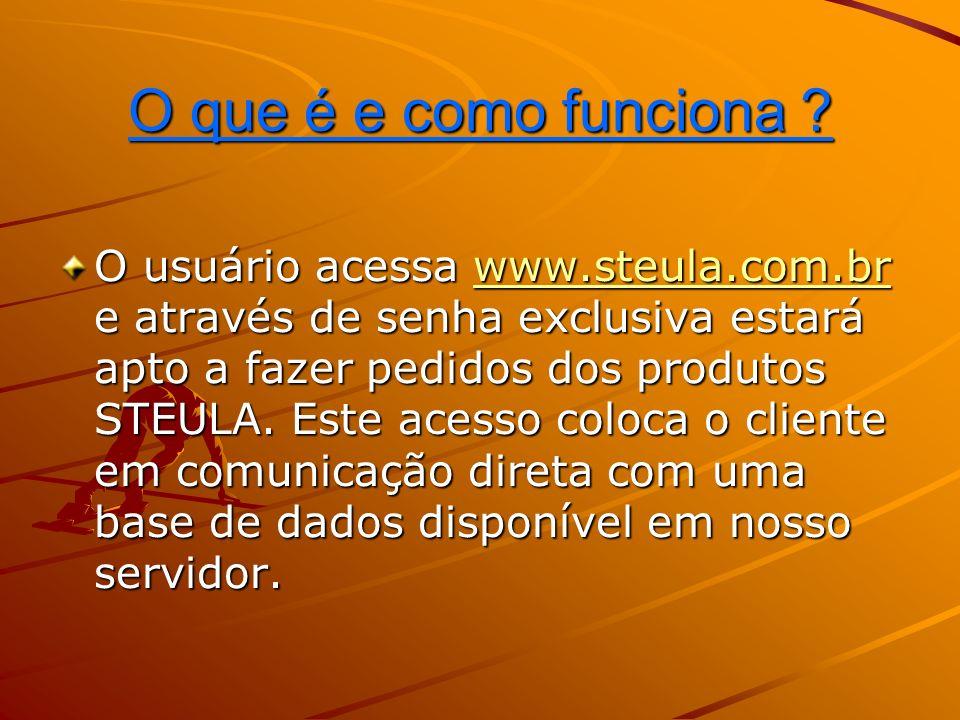 Instruções para operação do STEULA-ON-LINE A conexão com nosso servidor se encerra após 20 minutos de completa inatividade.
