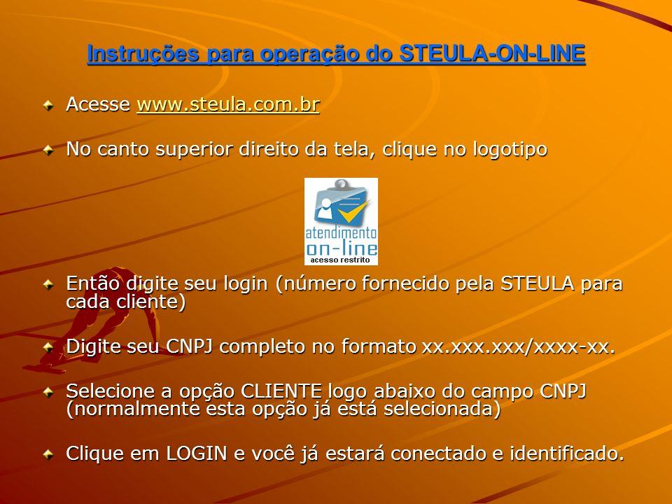 Instruções para operação do STEULA-ON-LINE Nesta primeira tela o cliente pode conferir seus dados cadastrais.