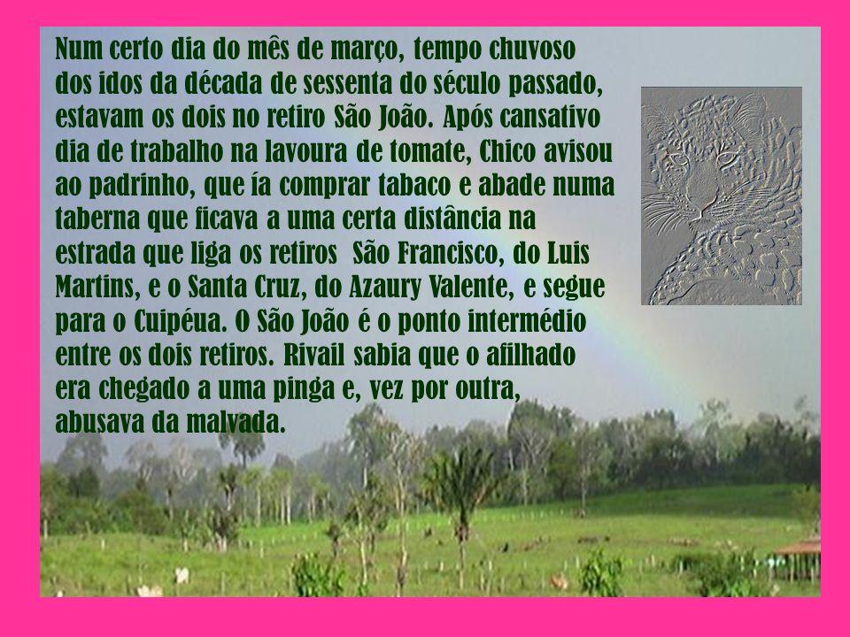 Num certo dia do mês de março, tempo chuvoso dos idos da década de sessenta do século passado, estavam os dois no retiro São João. Após cansativo dia