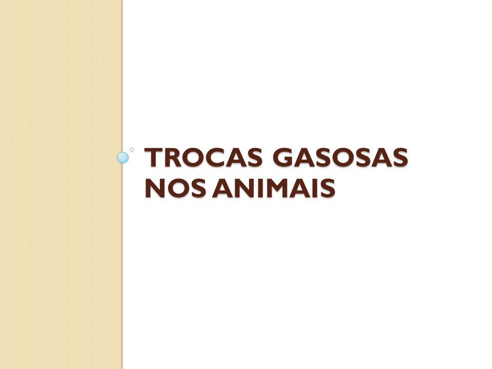 TROCAS GASOSAS NOS ANIMAIS