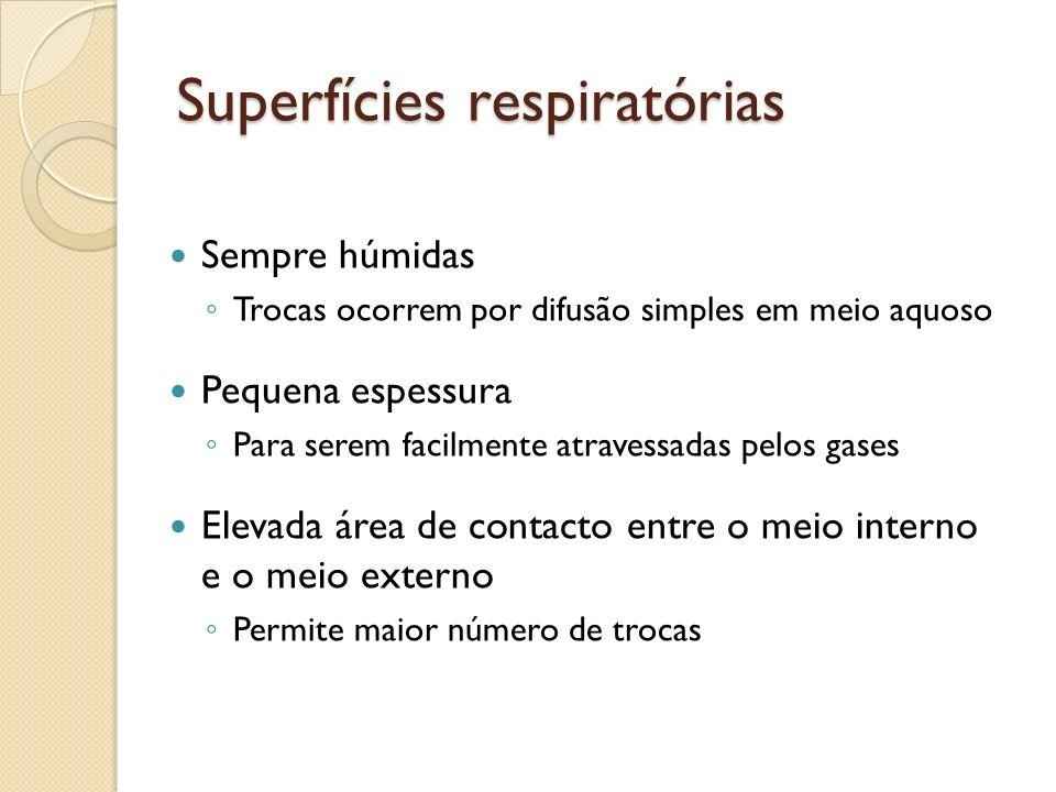Superfícies respiratórias Sempre húmidas Trocas ocorrem por difusão simples em meio aquoso Pequena espessura Para serem facilmente atravessadas pelos