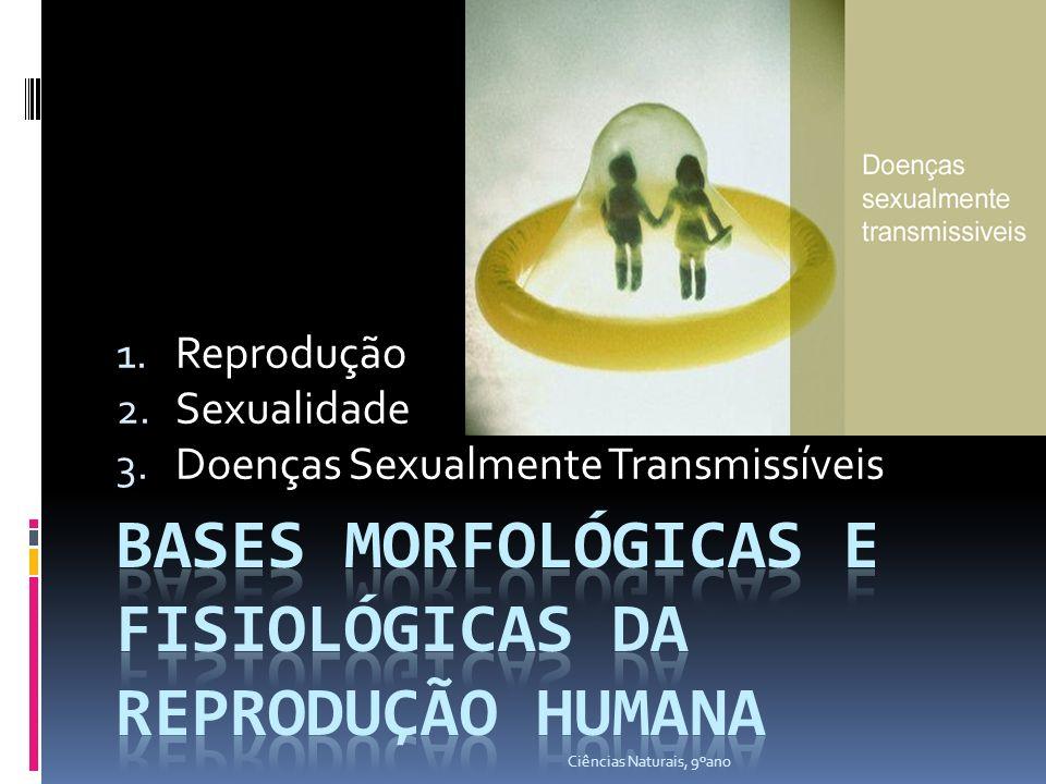 1. Reprodução 2. Sexualidade 3. Doenças Sexualmente Transmissíveis Ciências Naturais, 9ºano