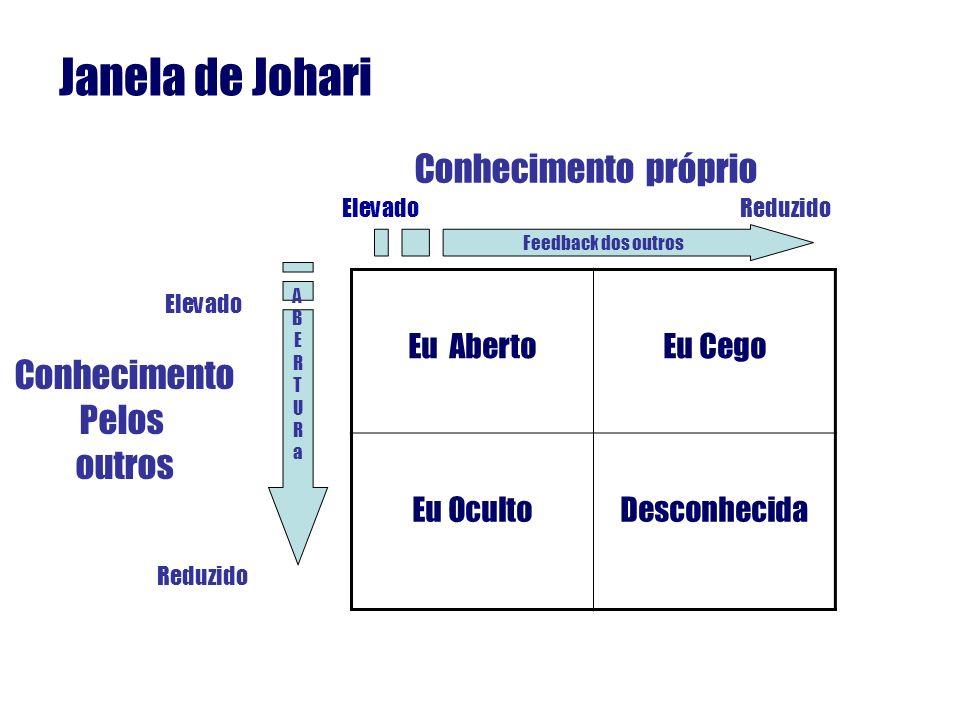 JANELA DE JOHARI RESUMO DAS CARACTERÍSTICAS Potencial inexplorado.