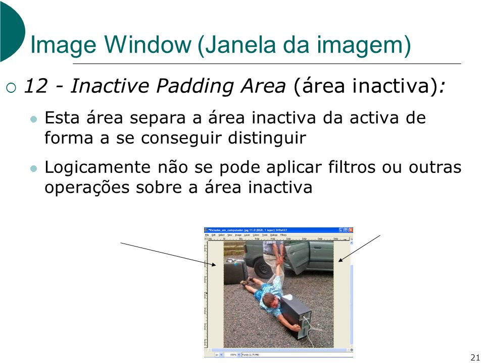 21 Image Window (Janela da imagem) 12 - Inactive Padding Area (área inactiva): Esta área separa a área inactiva da activa de forma a se conseguir distinguir Logicamente não se pode aplicar filtros ou outras operações sobre a área inactiva