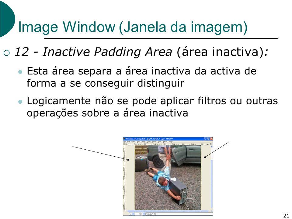 21 Image Window (Janela da imagem) 12 - Inactive Padding Area (área inactiva): Esta área separa a área inactiva da activa de forma a se conseguir dist