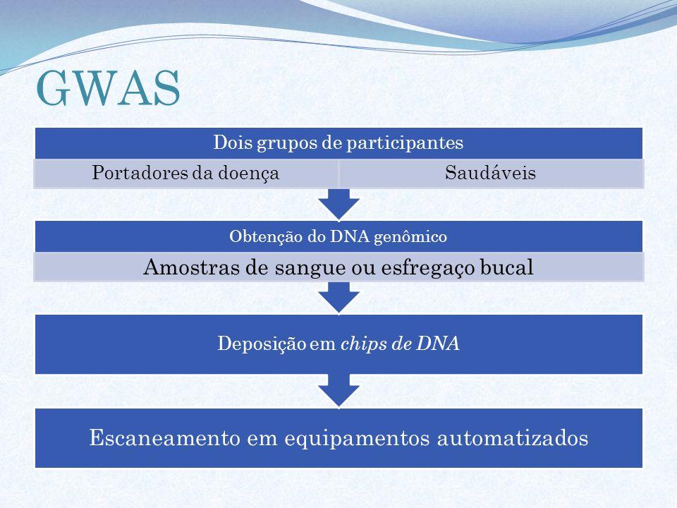 GWAS Escaneamento em equipamentos automatizados Deposição em chips de DNA Obtenção do DNA genômico Amostras de sangue ou esfregaço bucal Dois grupos d