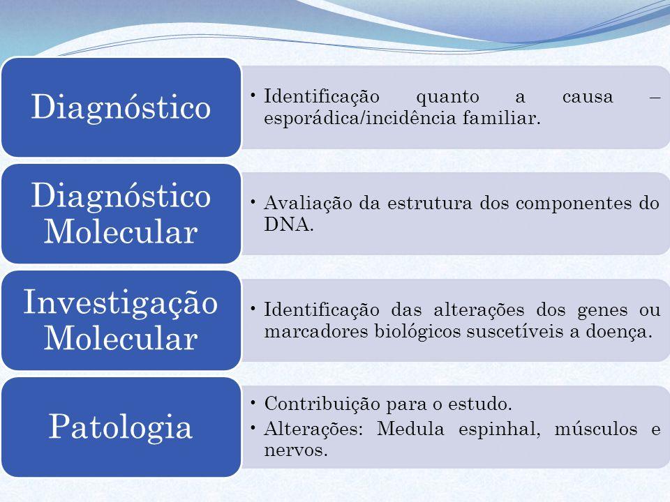 Identificação quanto a causa – esporádica/incidência familiar. Diagnóstico Avaliação da estrutura dos componentes do DNA. Diagnóstico Molecular Identi