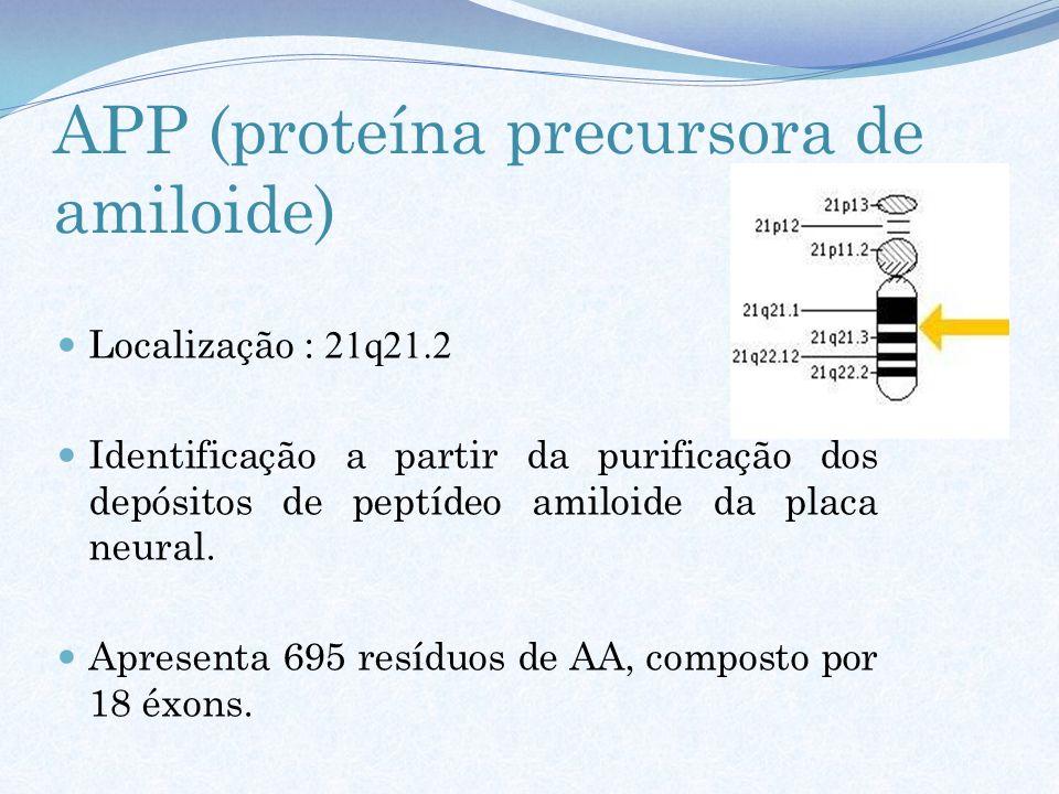 APP (proteína precursora de amiloide) Localização : 21q21.2 Identificação a partir da purificação dos depósitos de peptídeo amiloide da placa neural.