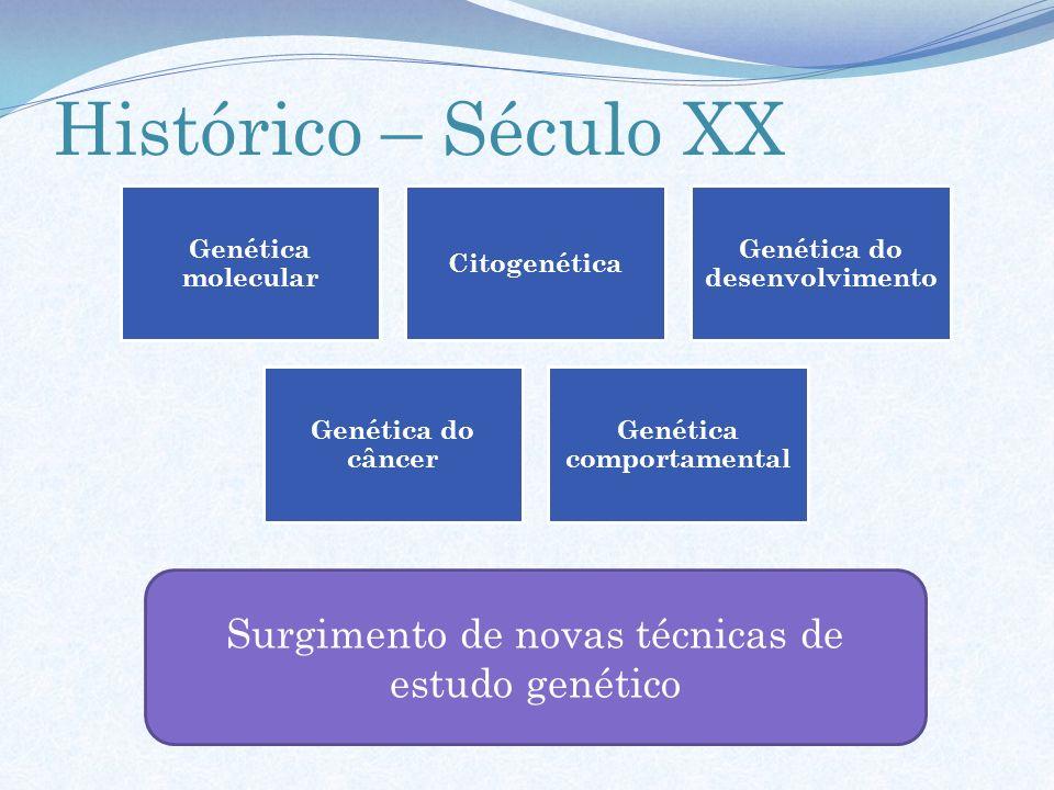 Histórico – Século XX Genética molecular Citogenética Genética do desenvolvimento Genética do câncer Genética comportamental Surgimento de novas técni