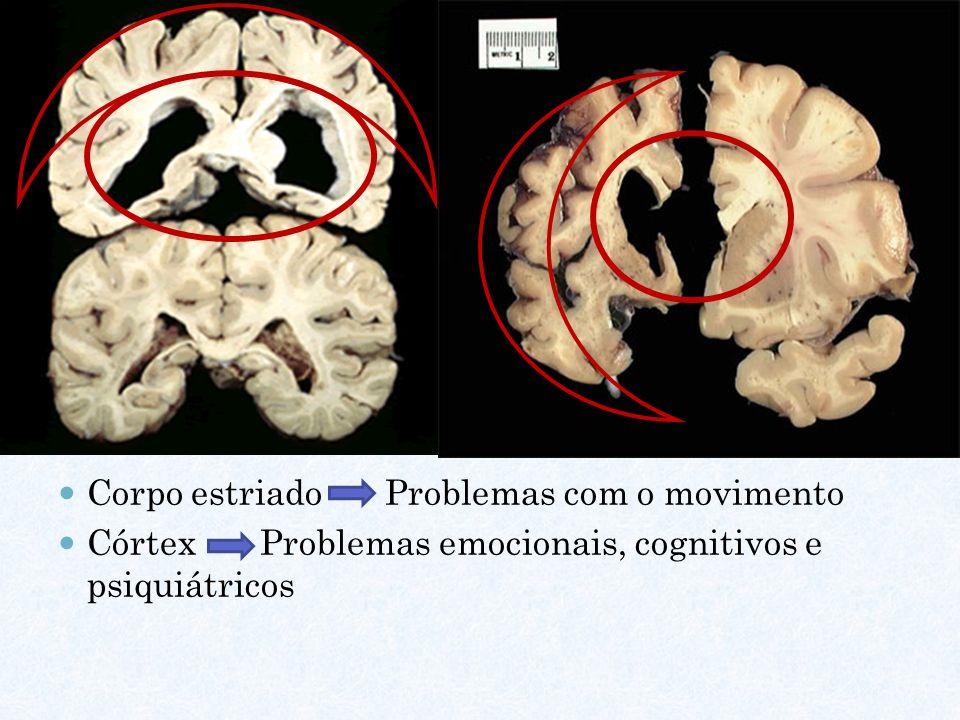 Corpo estriado Problemas com o movimento Córtex Problemas emocionais, cognitivos e psiquiátricos