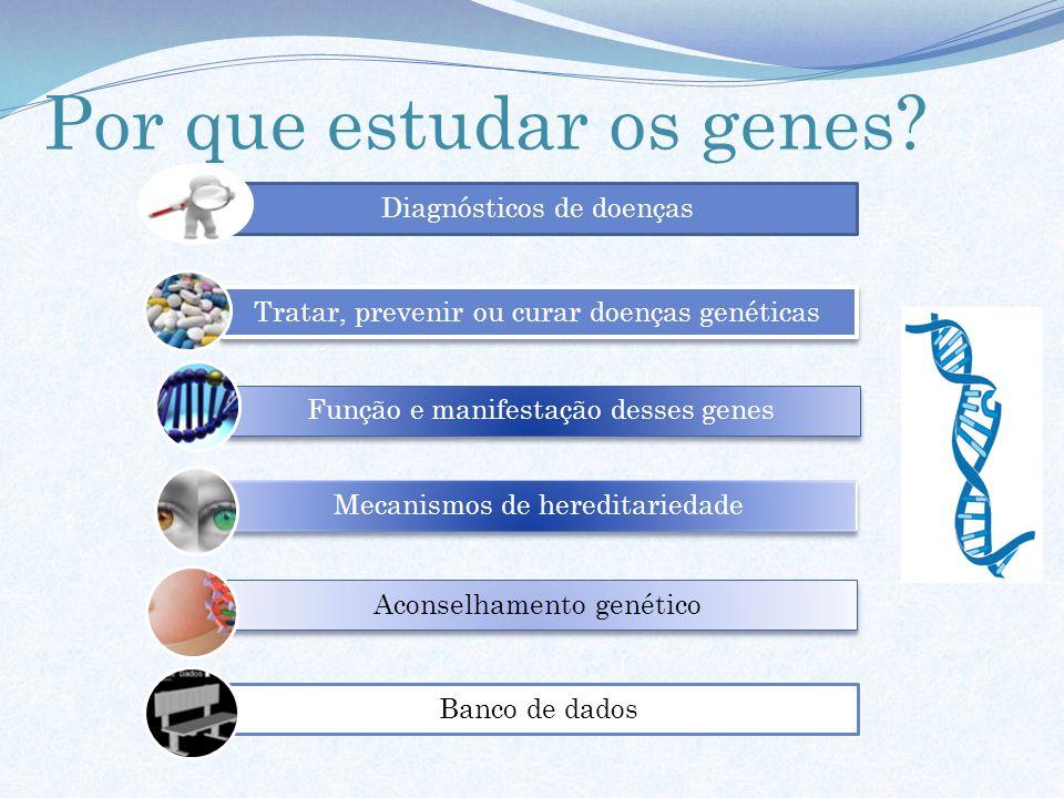Diagnósticos de doenças Tratar, prevenir ou curar doenças genéticas Função e manifestação desses genes Mecanismos de hereditariedade Aconselhamento ge