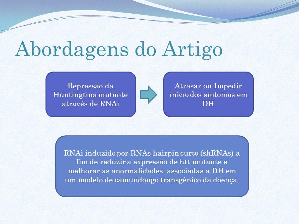Abordagens do Artigo Repressão da Huntingtina mutante através de RNAi Atrasar ou Impedir início dos sintomas em DH RNAi induzido por RNAs hairpin curt