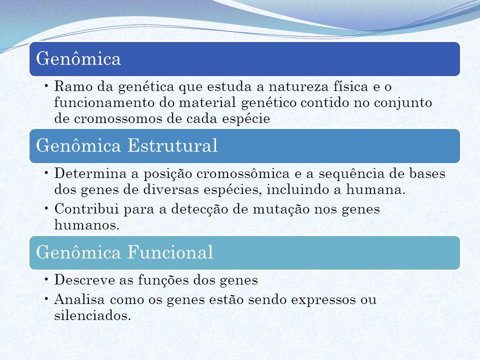 Genômica Ramo da genética que estuda a natureza física e o funcionamento do material genético contido no conjunto de cromossomos de cada espécie Genôm